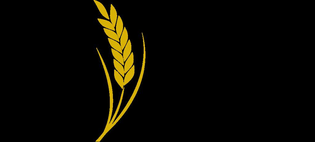 Logo of VIAL